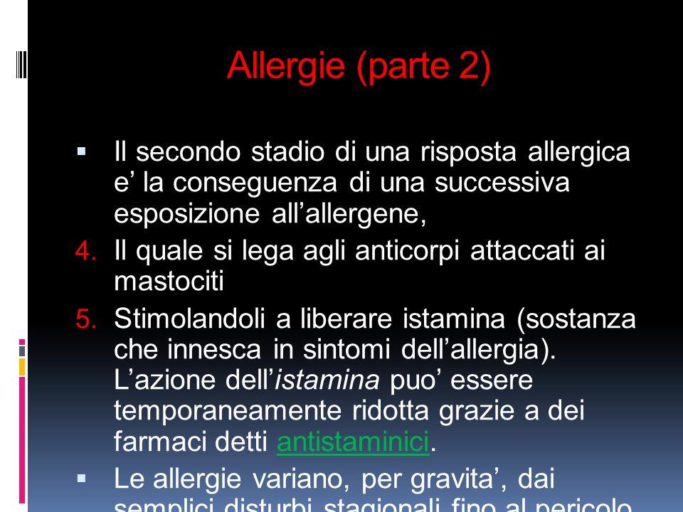 Allergie (parte 2) Il secondo stadio di una risposta allergica e la conseguenza di una successiva esposizione allallergene, 4. Il quale si lega agli a