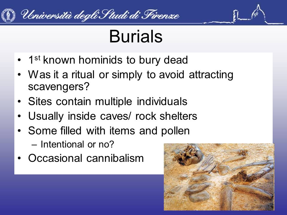 Burials 1 st known hominids to bury dead Was it a ritual or simply to avoid attracting scavengers? Sites contain multiple individuals Usually inside c