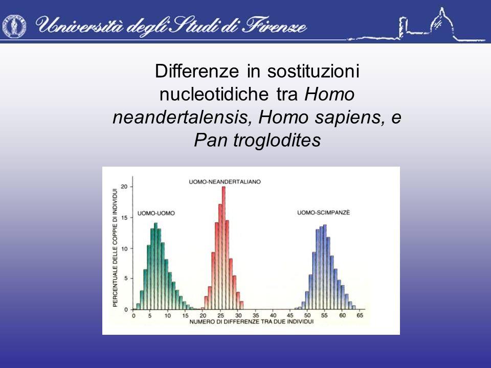 Differenze in sostituzioni nucleotidiche tra Homo neandertalensis, Homo sapiens, e Pan troglodites