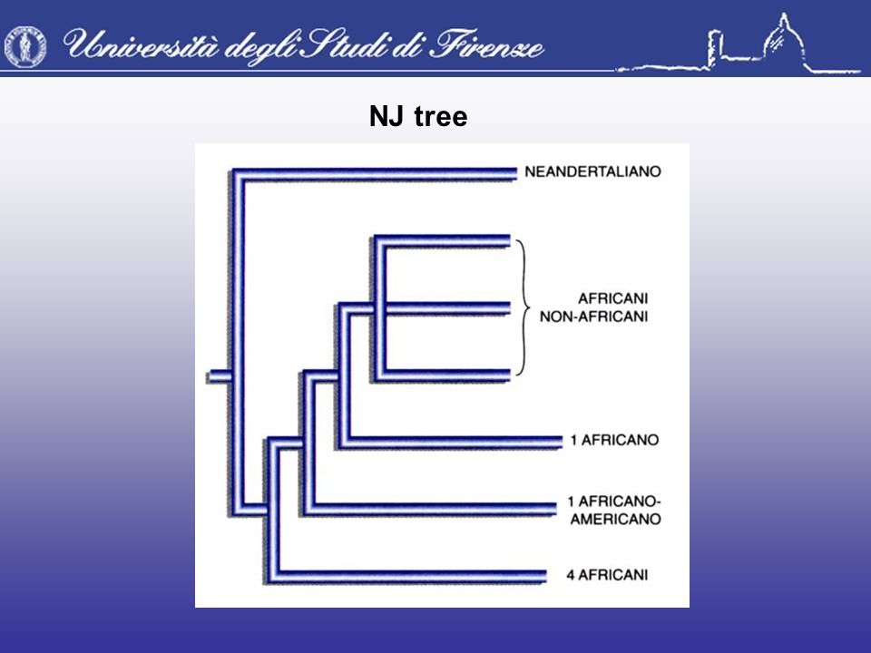 NJ tree