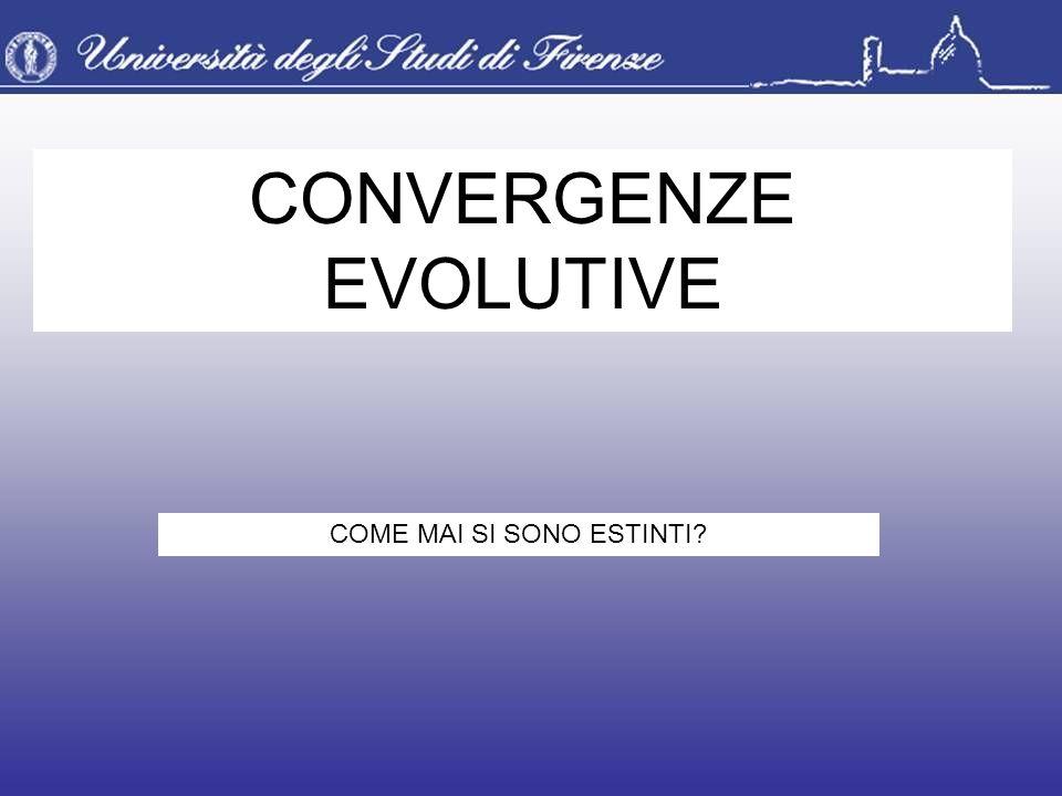 CONVERGENZE EVOLUTIVE COME MAI SI SONO ESTINTI?