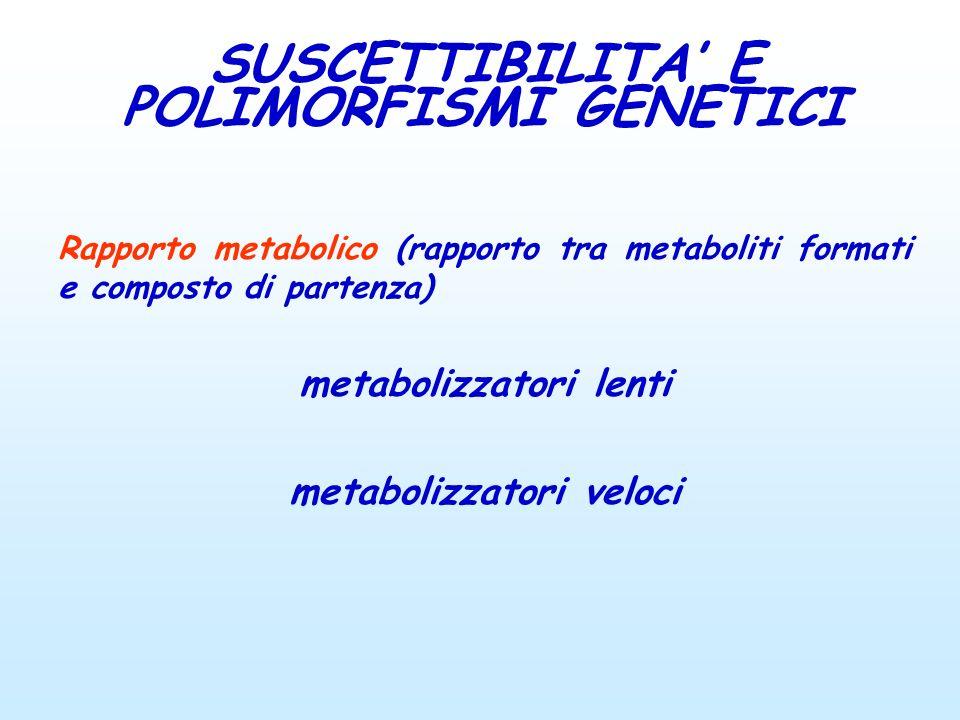 Rapporto metabolico (rapporto tra metaboliti formati e composto di partenza) metabolizzatori lenti metabolizzatori veloci SUSCETTIBILITA E POLIMORFISM