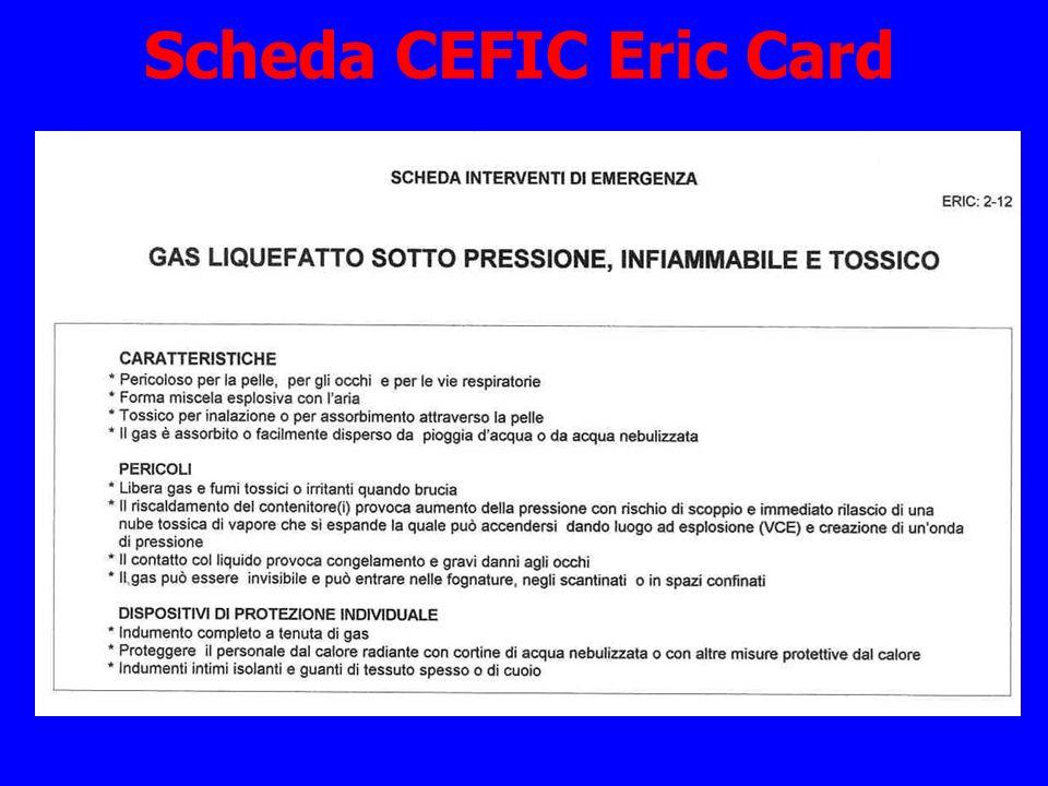 Scheda CEFIC Eric Card