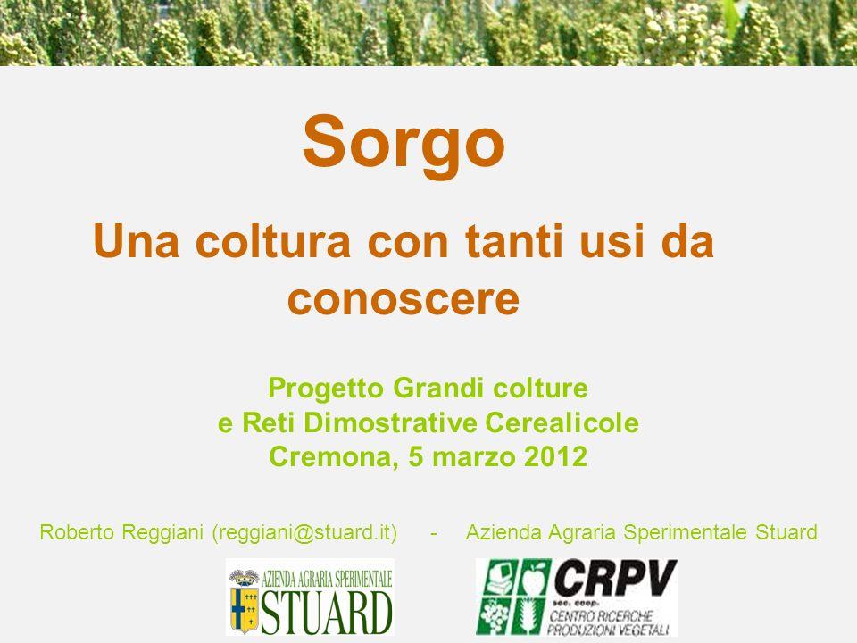 Roberto Reggiani (reggiani@stuard.it) - Azienda Agraria Sperimentale Stuard Sorgo Una coltura con tanti usi da conoscere Progetto Grandi colture e Ret
