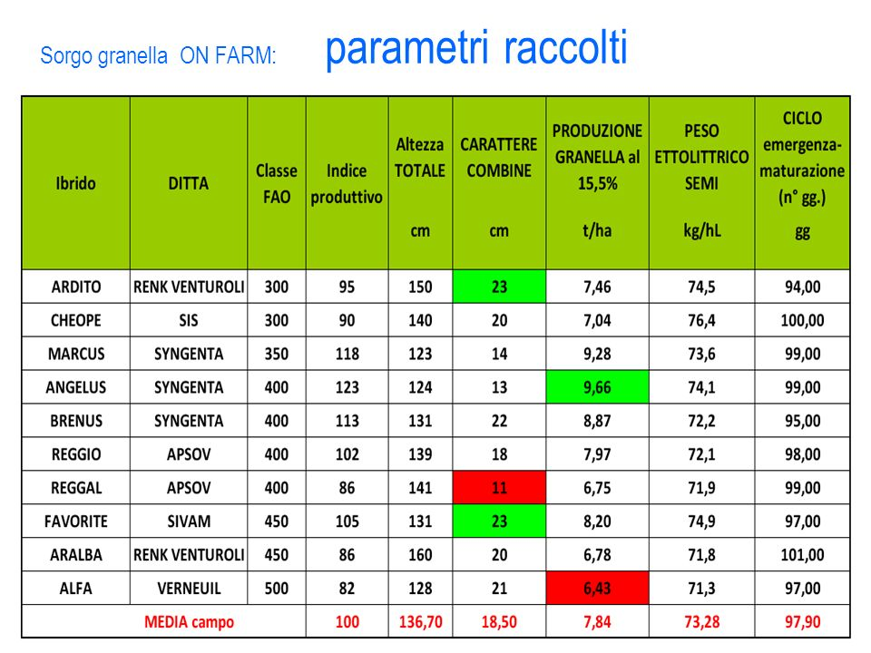 Sorgo granella ON FARM: parametri raccolti