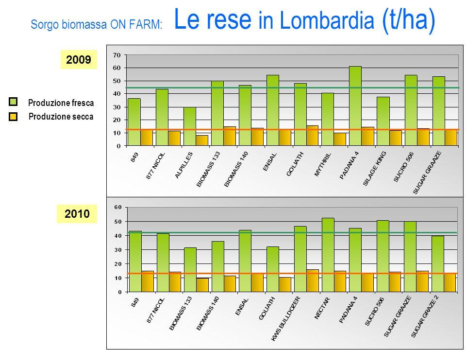 Sorgo biomassa ON FARM: Le rese in Lombardia (t/ha) 2010 2009 Produzione fresca Produzione secca