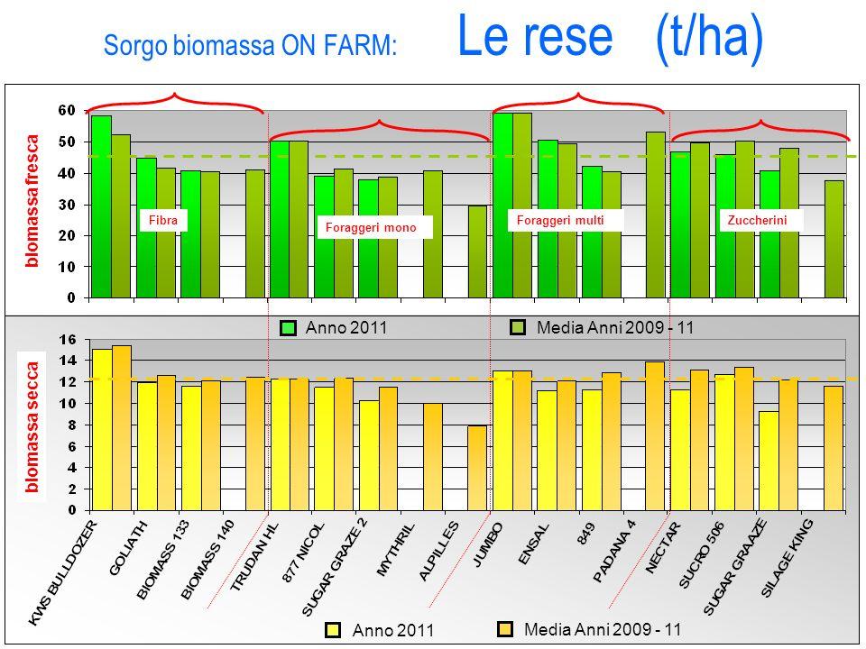 Sorgo biomassa ON FARM: Le rese (t/ha) Fibra Foraggeri mono Foraggeri multiZuccherini biomassa fresca biomassa secca Anno 2011 Media Anni 2009 - 11