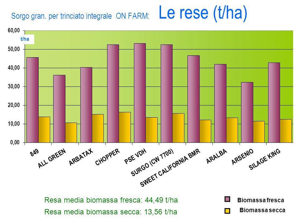 Sorgo gran. per trinciato integrale ON FARM: Le rese (t/ha) Biomassa secca Biomassa fresca Resa media biomassa fresca: 44,49 t/ha Resa media biomassa