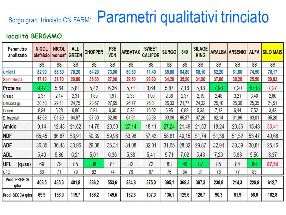 località BERGAMO Sorgo gran. trinciato ON FARM : Parametri qualitativi trinciato