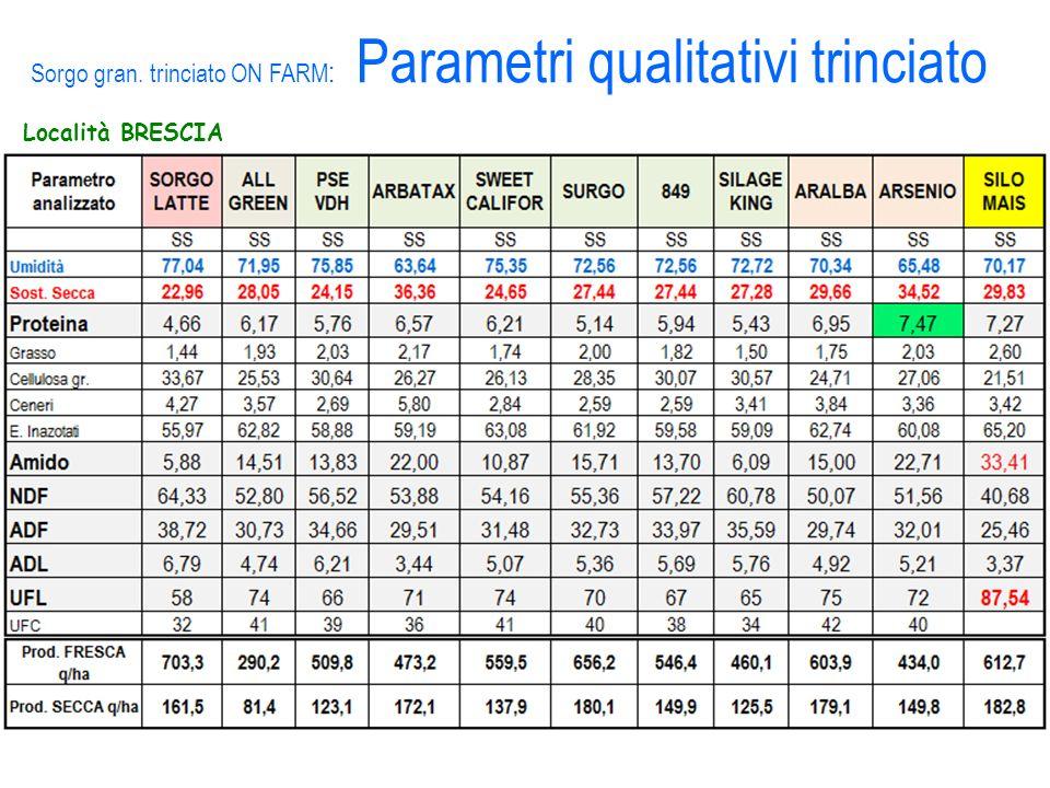 Località BRESCIA Sorgo gran. trinciato ON FARM : Parametri qualitativi trinciato