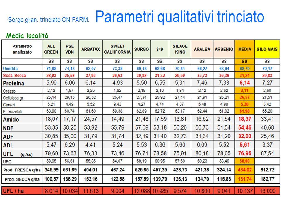Media località Sorgo gran. trinciato ON FARM : Parametri qualitativi trinciato