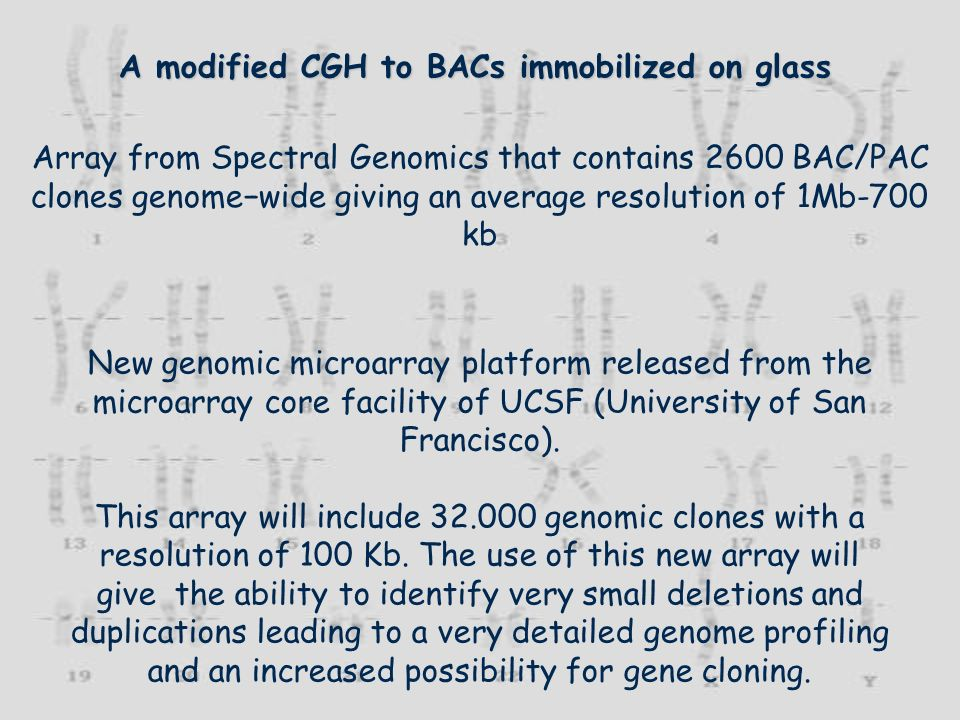 A modified CGH to BACs immobilized on glass Array from Spectral Genomics that contains 2600 BAC/PAC clones genomewide giving an average resolution of