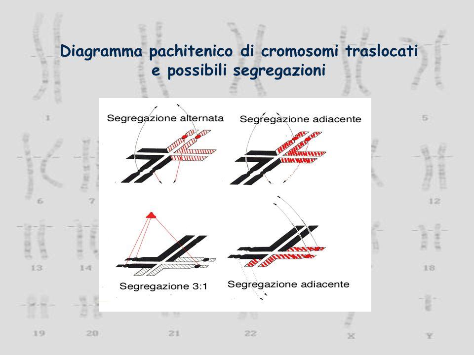 Delezione di un cromosoma 15q11-q13 e sindrome di Prader-Willi.