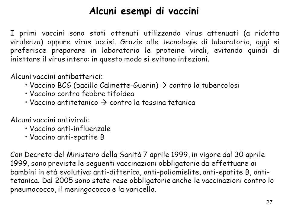 27 Alcuni esempi di vaccini I primi vaccini sono stati ottenuti utilizzando virus attenuati (a ridotta virulenza) oppure virus uccisi. Grazie alle tec