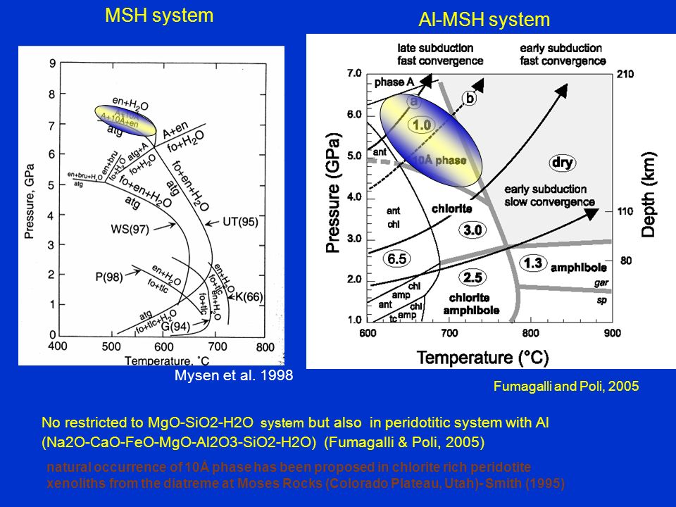 Fumagalli and Poli, 2005 Al-MSH system No restricted to MgO-SiO2-H2O system but also in peridotitic system with Al (Na2O-CaO-FeO-MgO-Al2O3-SiO2-H2O) (