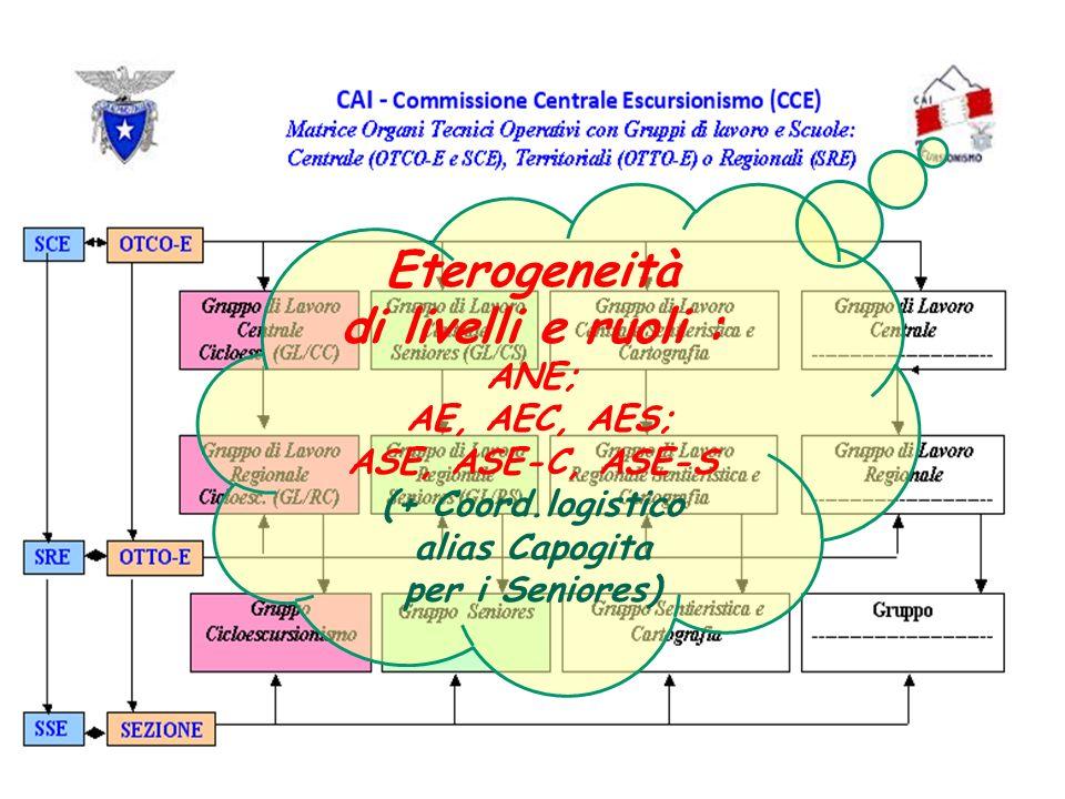 Eterogeneità di livelli e ruoli : ANE; AE, AEC, AES; ASE, ASE-C, ASE-S (+ Coord.logistico alias Capogita per i Seniores)