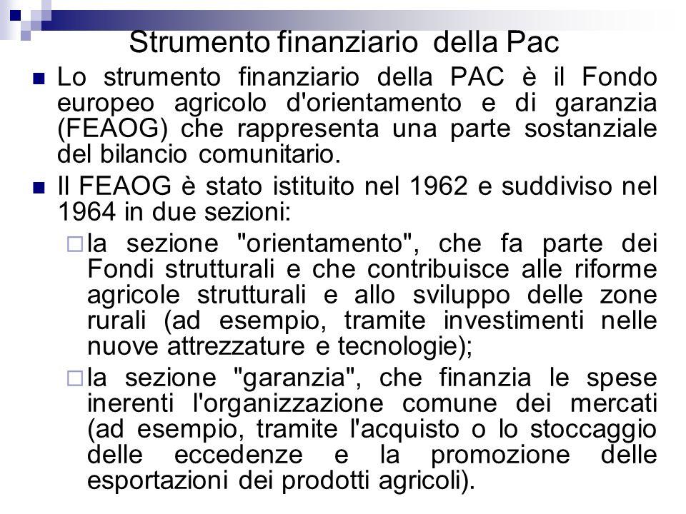 Strumento finanziario della Pac Lo strumento finanziario della PAC è il Fondo europeo agricolo d'orientamento e di garanzia (FEAOG) che rappresenta un