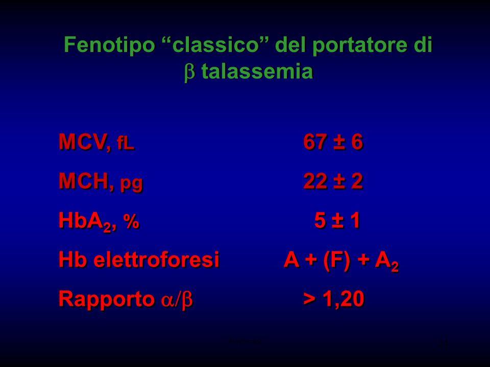 AM-tbmadc 24 Fenotipo classico del portatore di talassemia MCV, fL 67 ± 6 MCH, pg 22 ± 2 HbA 2, % 5 ± 1 Hb elettroforesi A + (F) + A 2 Rapporto > 1,20