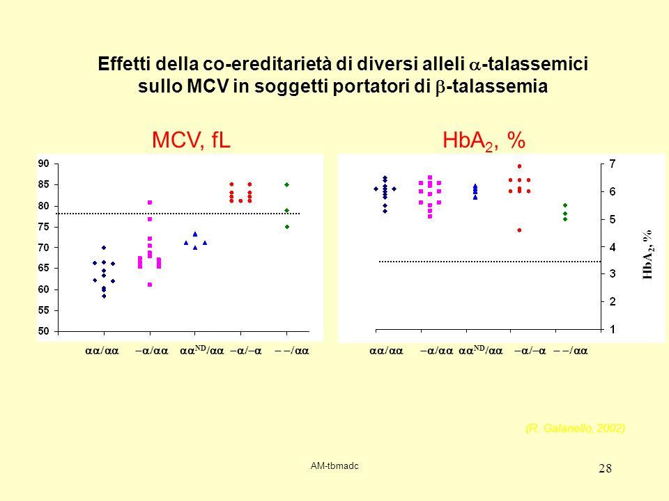 AM-tbmadc 28 HbA 2, % ND ND Effetti della co-ereditarietà di diversi alleli -talassemici sullo MCV in soggetti portatori di -talassemia MCV, fLHbA 2,