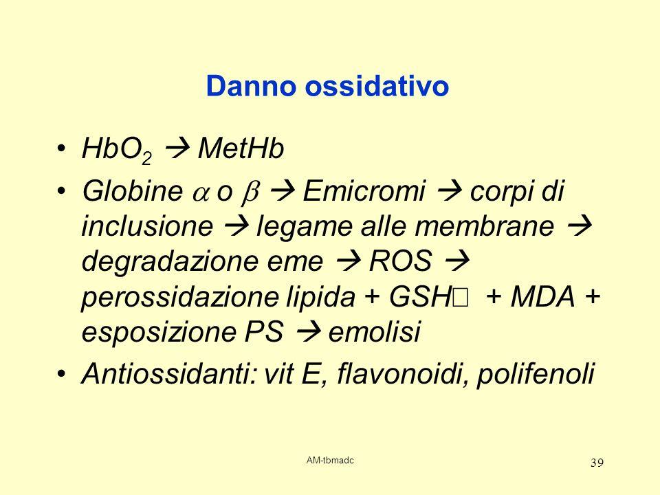 AM-tbmadc 39 Danno ossidativo HbO 2 MetHb Globine o Emicromi corpi di inclusione legame alle membrane degradazione eme ROS perossidazione lipida + GSH