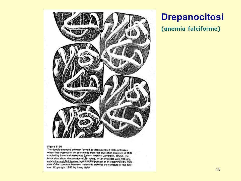 AM-tbmadc 48 Drepanocitosi (anemia falciforme)