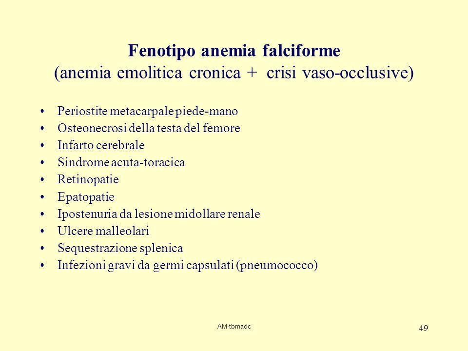 AM-tbmadc 49 Fenotipo anemia falciforme (anemia emolitica cronica + crisi vaso-occlusive) Periostite metacarpale piede-mano Osteonecrosi della testa d