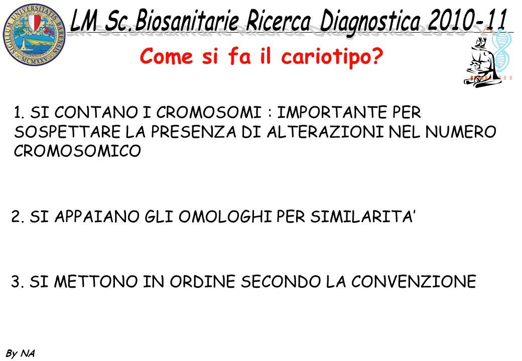 By NA 1. SI CONTANO I CROMOSOMI : IMPORTANTE PER SOSPETTARE LA PRESENZA DI ALTERAZIONI NEL NUMERO CROMOSOMICO 2. SI APPAIANO GLI OMOLOGHI PER SIMILARI