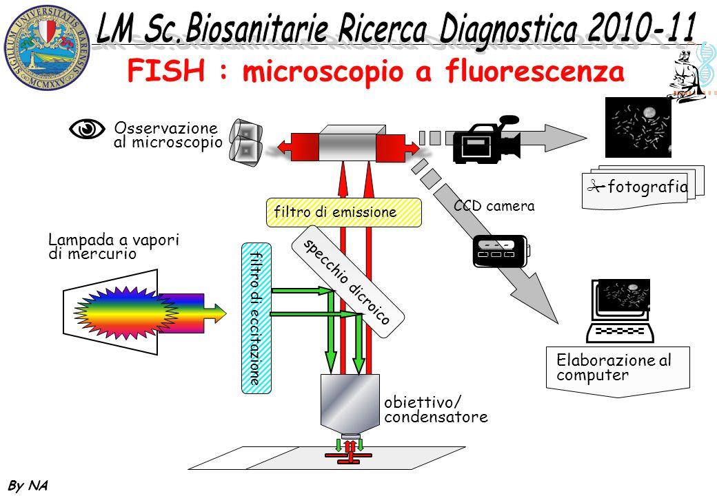 By NA filtro di emissione specchio dicroico filtro di eccitazione obiettivo/ condensatore fotografia CCD camera Lampada a vapori di mercurio Elaborazi