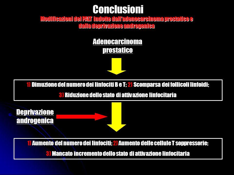 Conclusioni Adenocarcinoma prostatico 1) Dimuzione del numero dei linfociti B e T; 2) Scomparsa dei follicoli linfoidi; 3) Riduzione dello stato di at