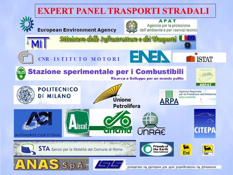 European Environment Agency CNR - I S T I T U T O M O T O R I Unione Petrolifera EXPERT PANEL TRASPORTI STRADALI