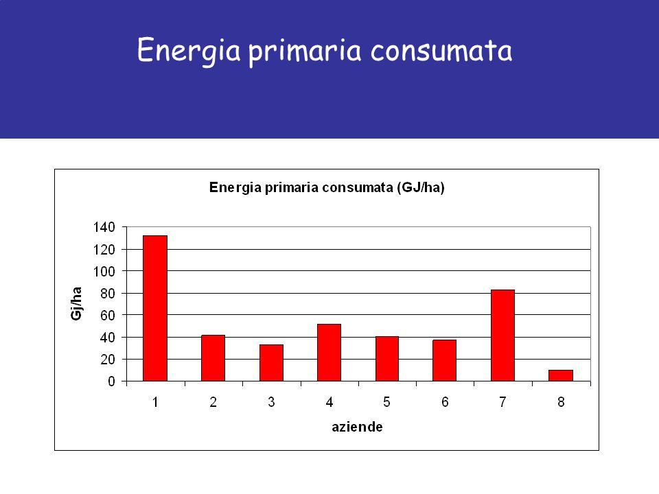 Energia primaria consumata