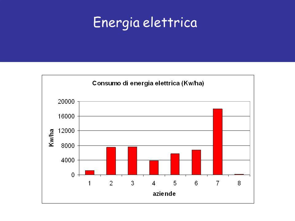 Energia elettrica per mese