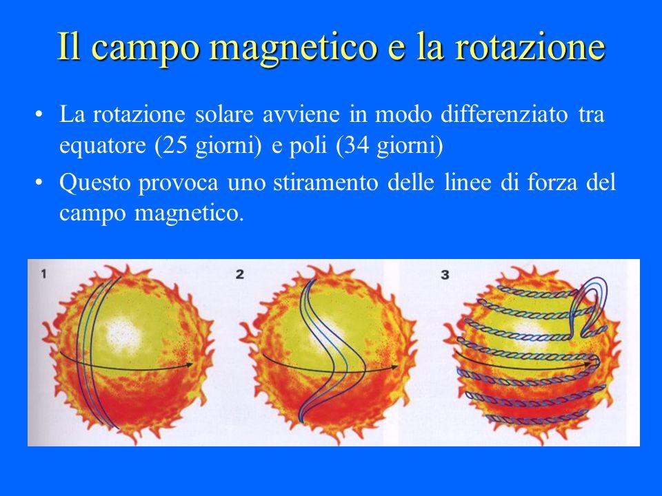Il campo magnetico e la rotazione La rotazione solare avviene in modo differenziato tra equatore (25 giorni) e poli (34 giorni) Questo provoca uno sti