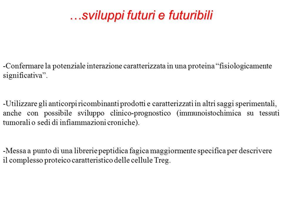 …sviluppi futuri e futuribili -Confermare la potenziale interazione caratterizzata in una proteina fisiologicamente significativa. -Utilizzare gli ant