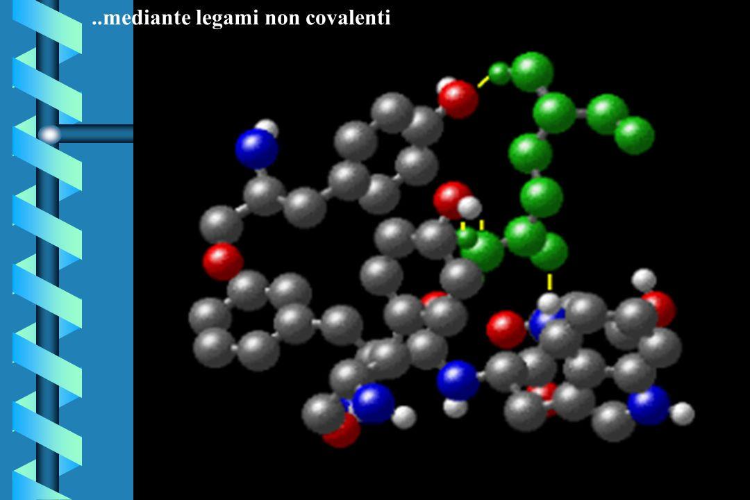 ..mediante legami non covalenti