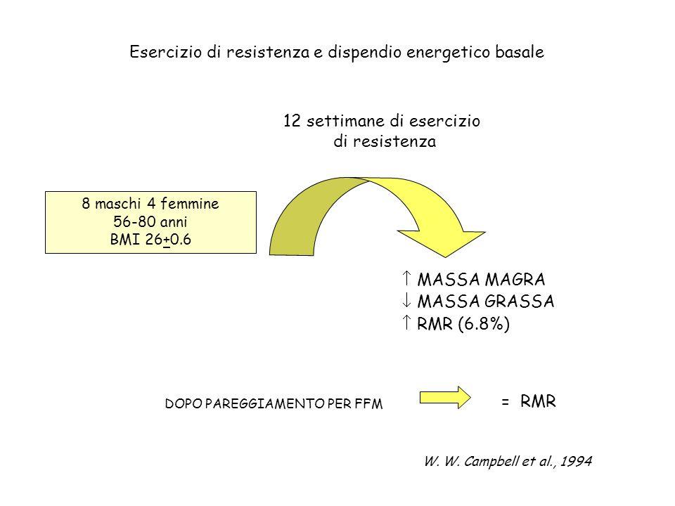 Esercizio di resistenza e dispendio energetico basale 8 maschi 4 femmine 56-80 anni BMI 26+0.6 12 settimane di esercizio di resistenza MASSA MAGRA MAS