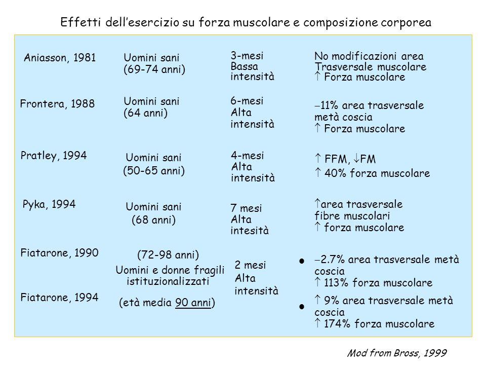 Aniasson, 1981 Uomini sani (69-74 anni) No modificazioni area Trasversale muscolare Forza muscolare Pratley, 1994 4-mesi Alta intensità FFM, FM 40% fo