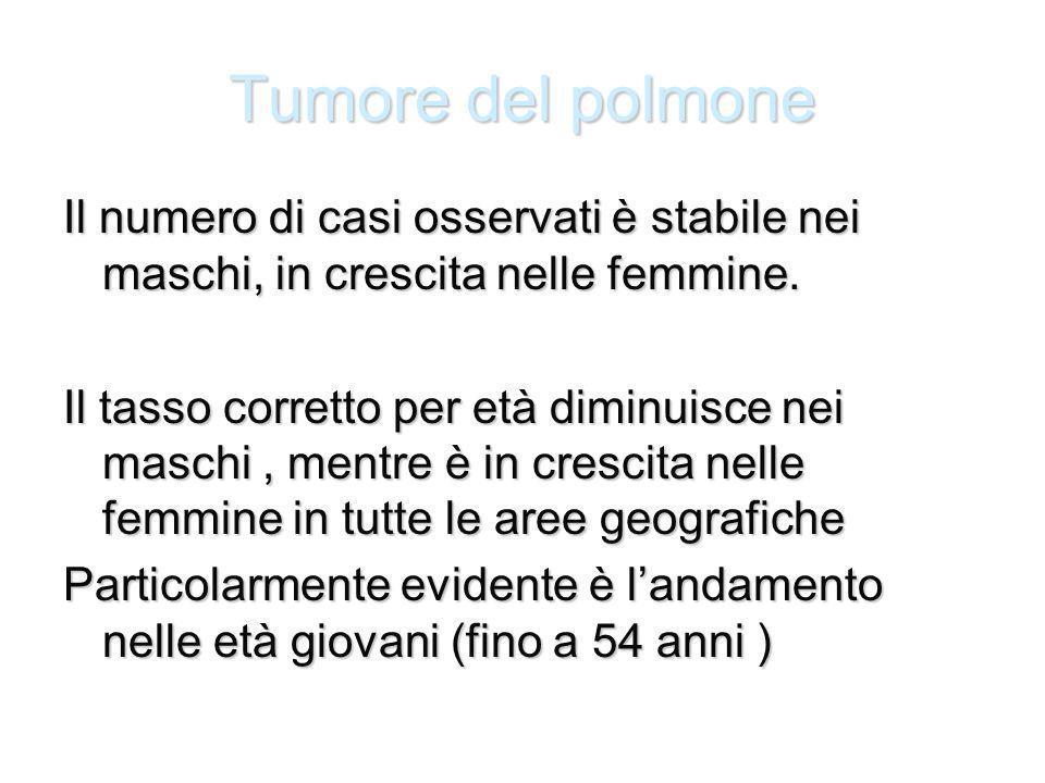 Tumore del polmone Il numero di casi osservati è stabile nei maschi, in crescita nelle femmine.