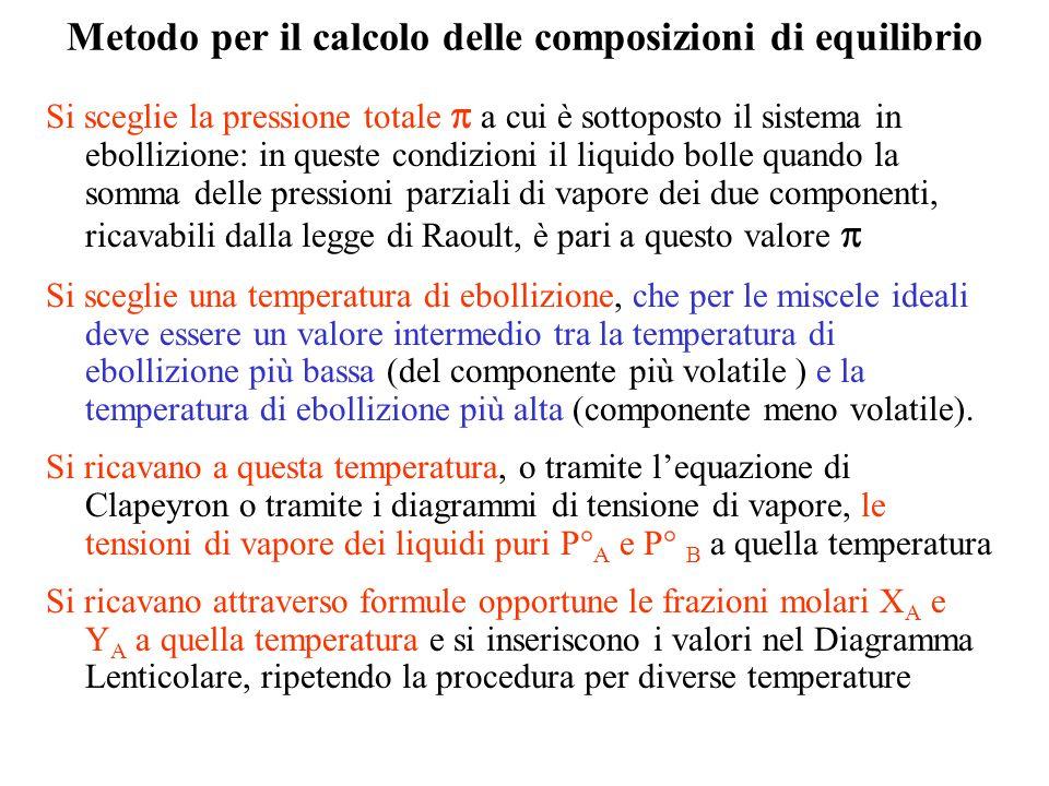 Metodo per il calcolo delle composizioni di equilibrio Si sceglie la pressione totale a cui è sottoposto il sistema in ebollizione: in queste condizio