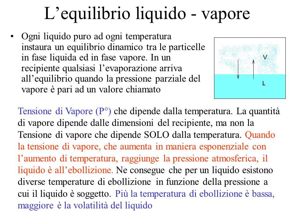 Lequilibrio liquido - vapore Ogni liquido puro ad ogni temperatura instaura un equilibrio dinamico tra le particelle in fase liquida ed in fase vapore