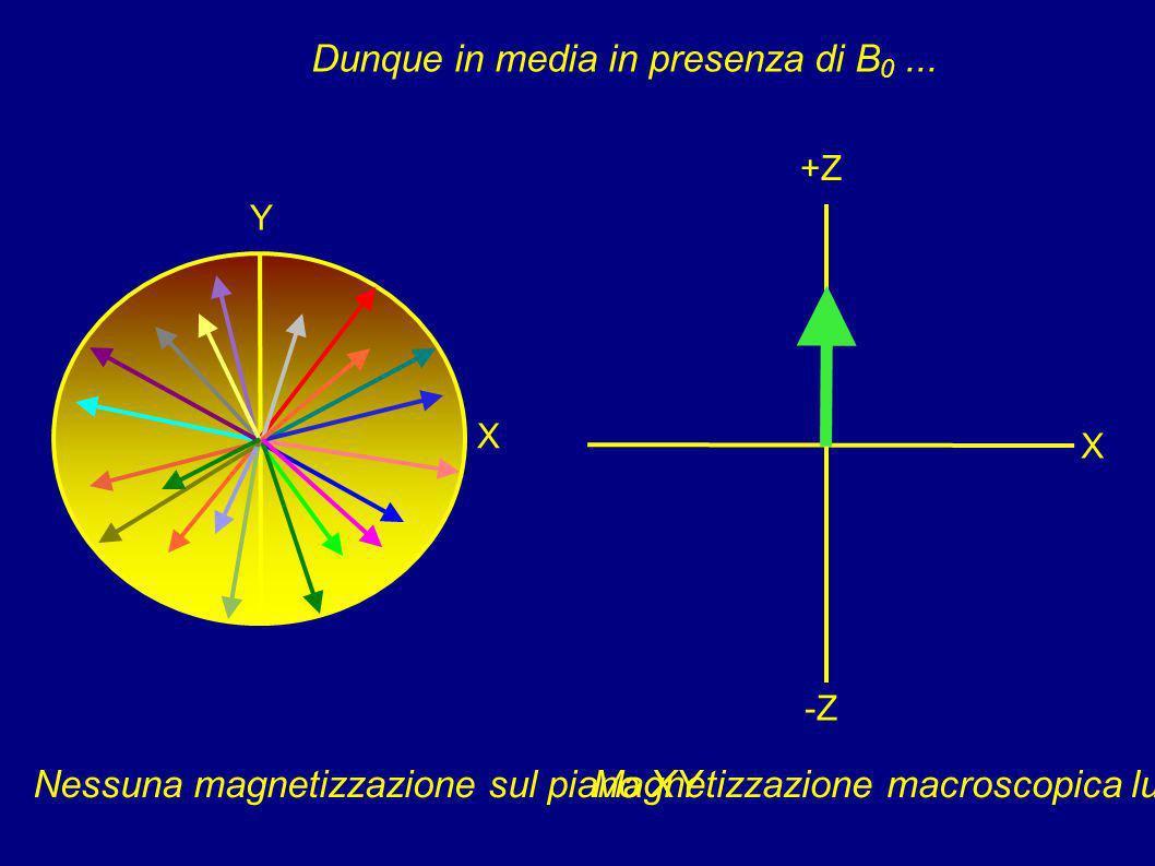 In un campione reale... X Y X +Z -Z...ogni nucleo ha fase diversa!