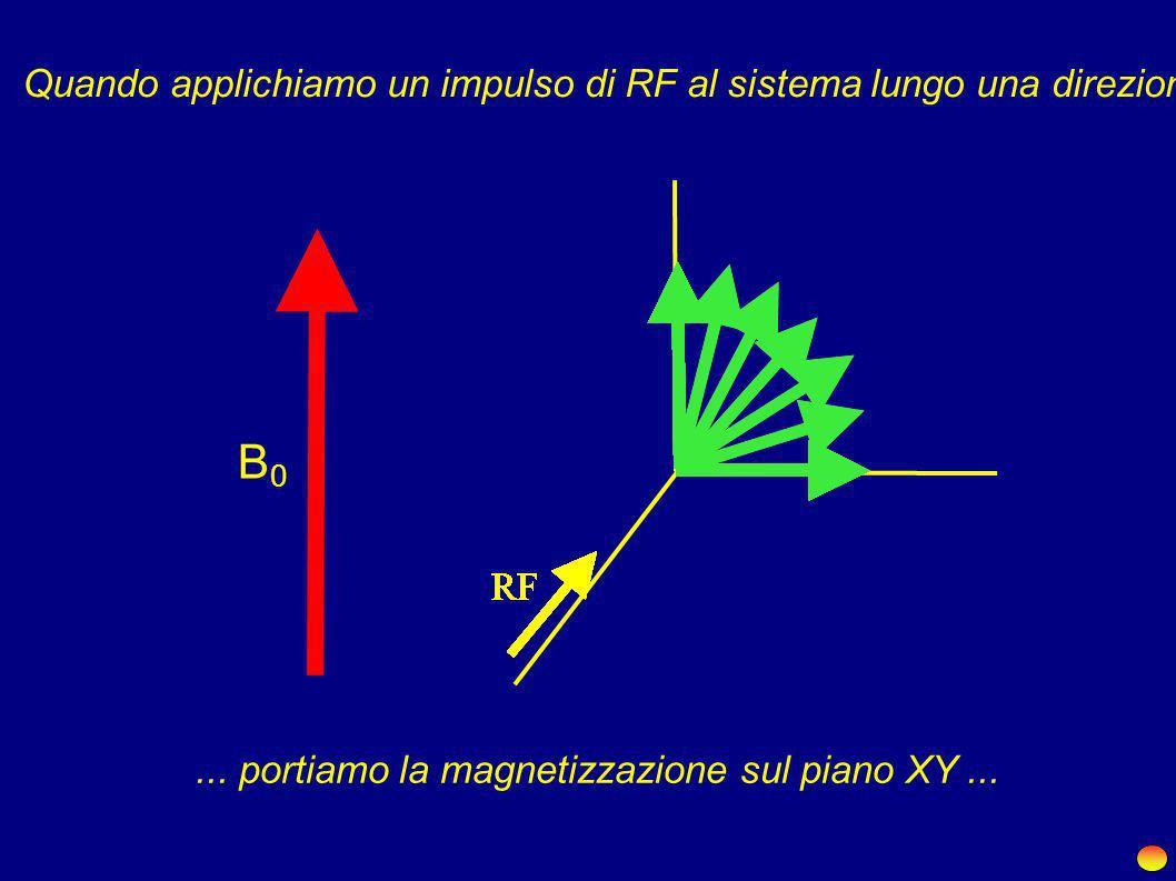 X +Z -Z Dunque in media in presenza di B 0... Nessuna magnetizzazione sul piano XYMagnetizzazione macroscopica lungo Z X Y