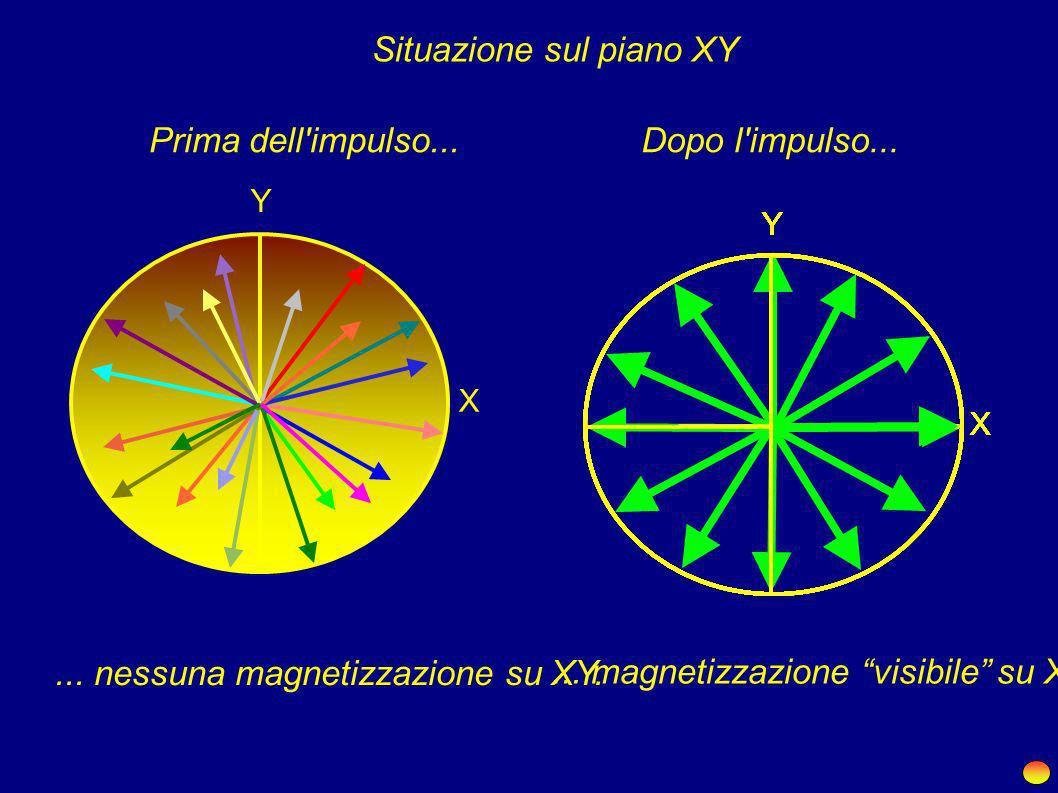 ... dove in assenza di ulteriori sollecitazioni... B0B0... ruota con velocità angolare pari alla frequenza di risonanza dei nuclei.