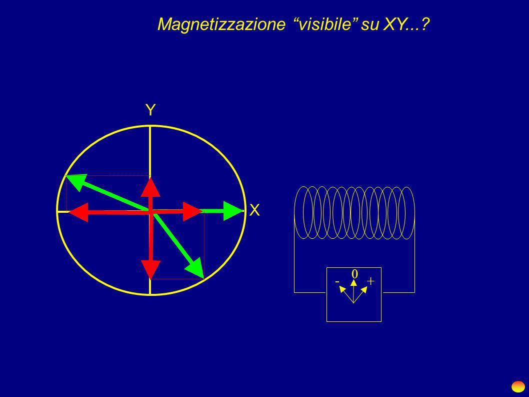 X Y X Y X Y X Y X Y X Y X Y X Y X Y X Y X Y X Y X Y X Y... nessuna magnetizzazione su XY. Prima dell'impulso...Dopo l'impulso...... magnetizzazione vi
