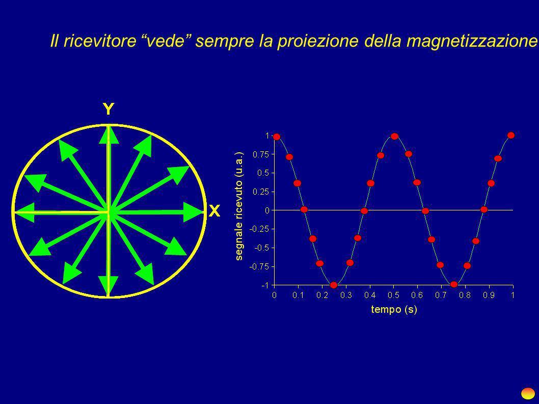 X Y Magnetizzazione visibile su XY...? 0 - +