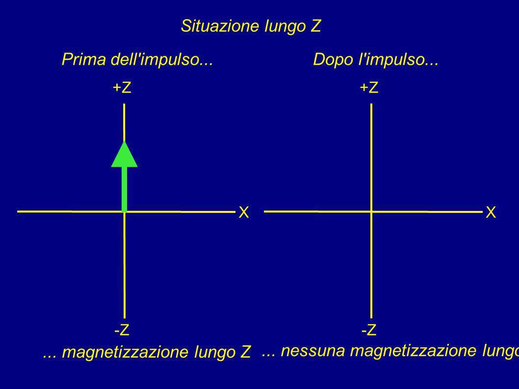 In questo modo è molto più semplice interpretare curve contenenti i segnali di materiali diversi aventi un diverso T 2.. Ecco il caso di una biesponen