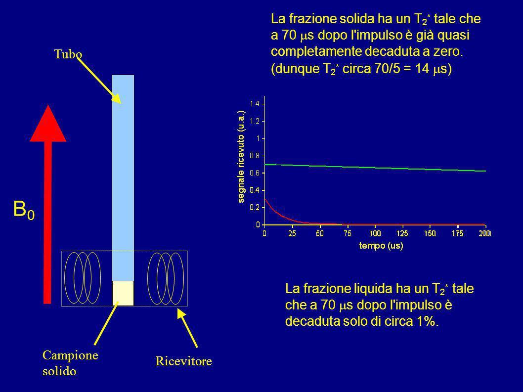 Il più semplice esperimento (sequenza) NMR è dunque: AQ RD AQ + RD > 3-5 T 1 [] n Come usare questa sequenza per determinare ad esempio la % di grasso