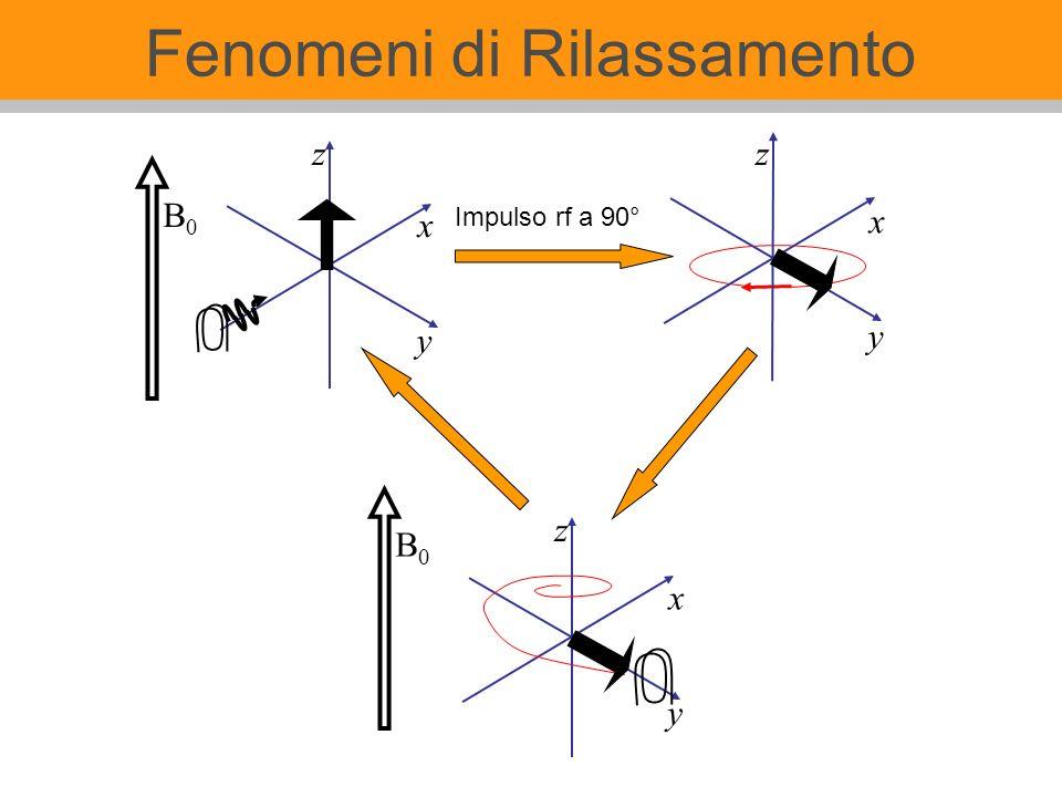 Fenomeni di Rilassamento z x y Impulso rf a 90° z B0B0 B0B0 x y x y z