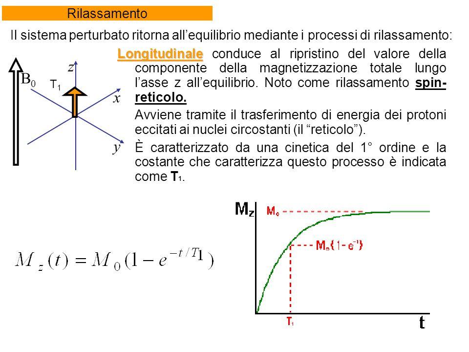 Longitudinale Longitudinale conduce al ripristino del valore della componente della magnetizzazione totale lungo lasse z allequilibrio.