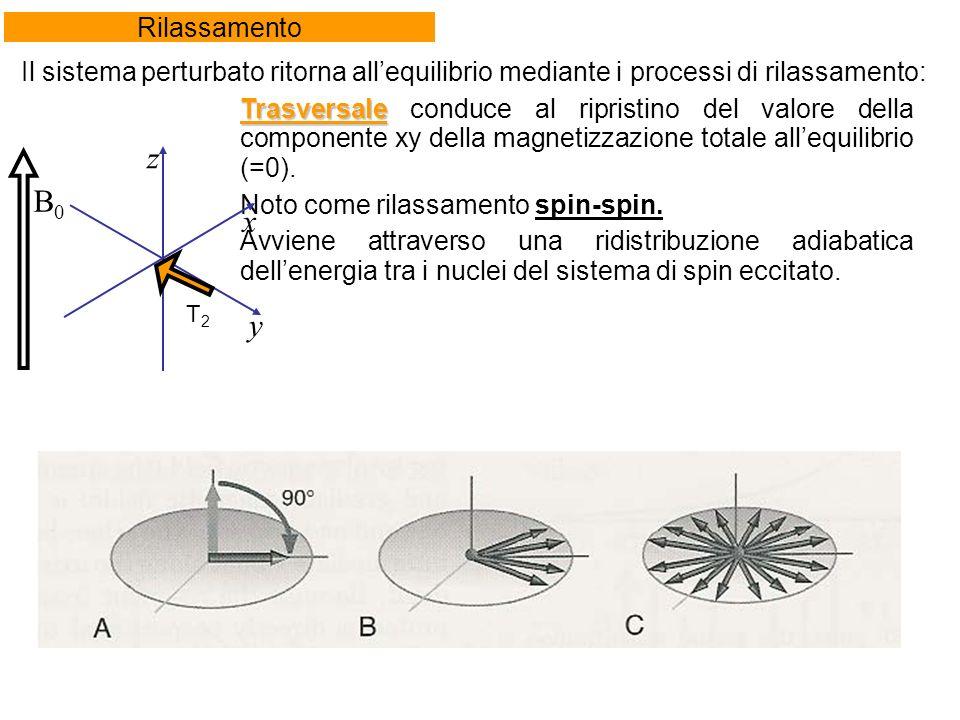 Trasversale Trasversale conduce al ripristino del valore della componente xy della magnetizzazione totale allequilibrio (=0).
